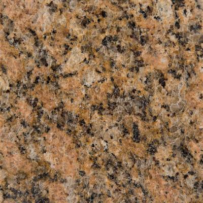 Granite Countertop Sample In Giallo Veneziano